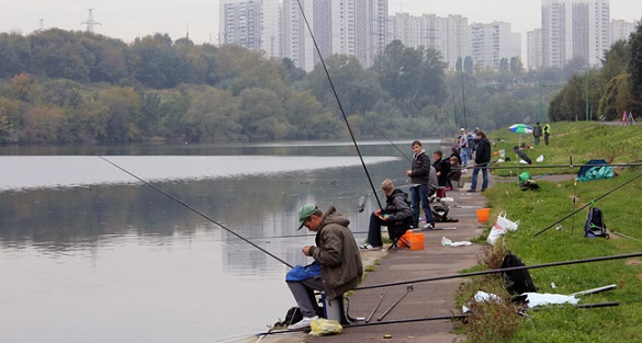 Москва-река может превратиться в Амазонку. 395294.jpeg