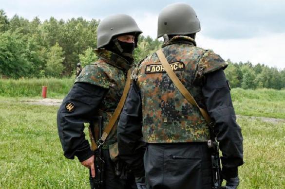 Порошенко обнародовал план быстрой зачистки Донбасса. Порошенко обнародовал план быстрой зачистки Донбасса