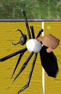Виртуальный паук борется с арахнофобией