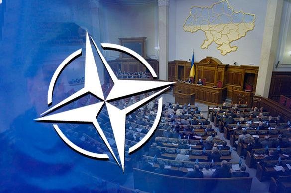 Стремление в НАТО узаконили на Украине
