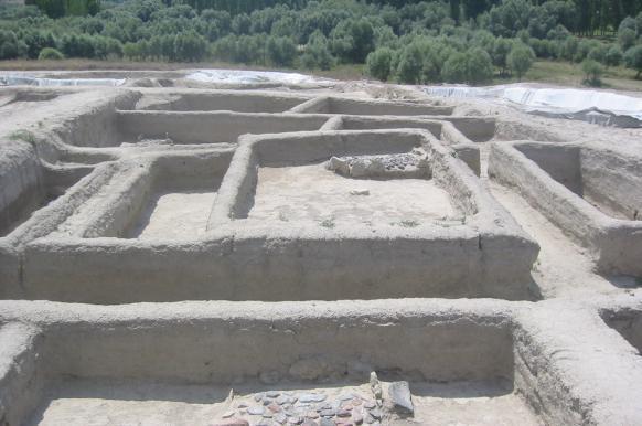Древние отложения мочи позволили уточнить, когда возникло скотоводство.