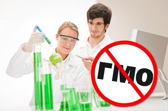 В ближайшие 100 лет Россия будет жить без ГМО
