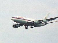 Самолет Медведева из-за метели не смог сесть в Москве. 280316.jpeg