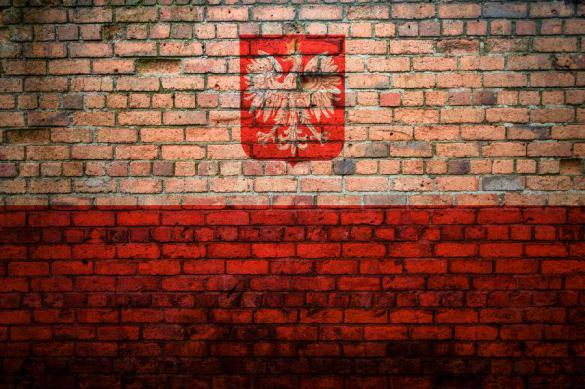 Польша отгородится забором от России, Украины и Белоруссии. Польша отгородится забором от России, Украины и Белоруссии