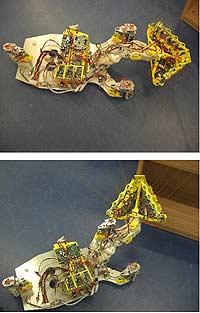Крысо-роботы помогут пожарным