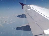 Пьяный пассажир самолета избил стюарда. 247321.jpeg