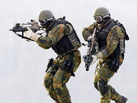 Австрийцы поддерживает воинскую повинность. 279321.jpeg
