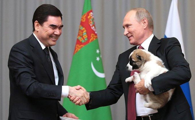 У Владимира Путина появился алабай Верный. 377322.jpeg