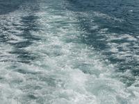Паром с 600 пассажирами пошел ко дну у берегов Танзании. 245331.jpeg