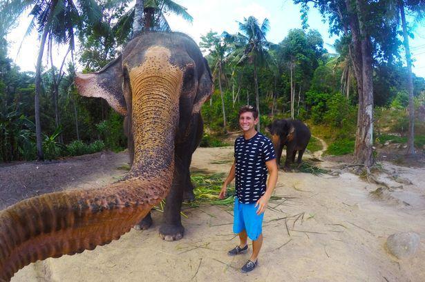 Слон отобрал у туриста камеру и сделал несколько фото. 320333.jpeg