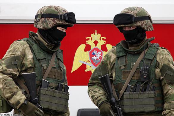 Статистика ликвидаторов: бандформирования Северного Кавказа практически разгромлены. 377335.jpeg