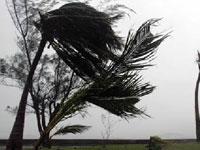 Пять тысяч мексиканцев эвакуированы из-за урагана