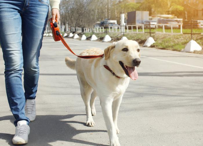 Жонглирование лучше всего развивает мозг