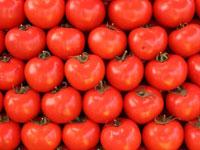Кембриджские ученые сделали таблетки из помидоров