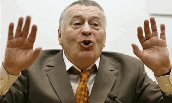 Жириновский метит в президенты Новороссии. 297343.jpeg