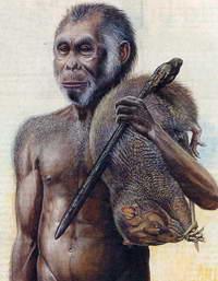 Ученые определились: человек произошел не от хоббита