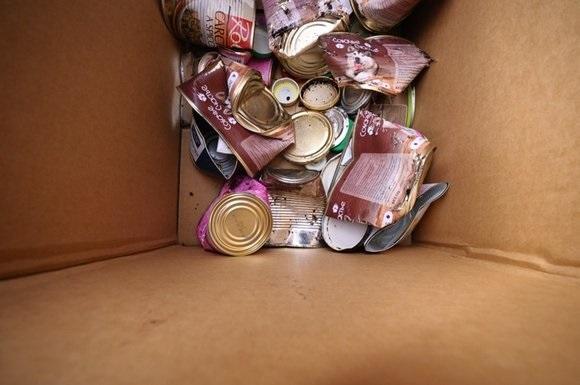 Биокомпостеры для переработки мусора внедрят в Москве. 402349.jpeg