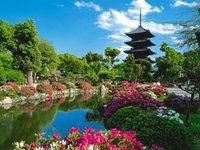 Япония беспрецедентно снизила цены на путевки. 236357.jpeg