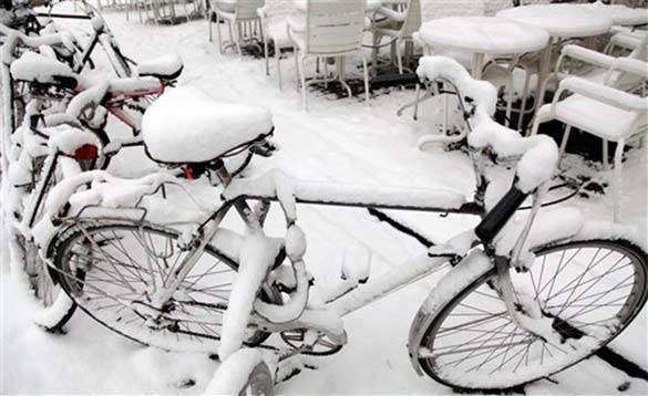 13 февраля: на работу на велосипеде поедем все вместе. Велосипеды зимой
