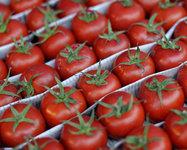 Яркие овощи и фрукты спасают от рака груди. 276359.jpeg