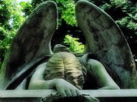 В Бразилии объявлен трехдневный траур по жертвам авиакатастрофы