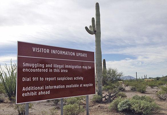Уникальный  парк-монумент Organ Pipe Cactus  в Аризоне снова открыт для туристов. парк