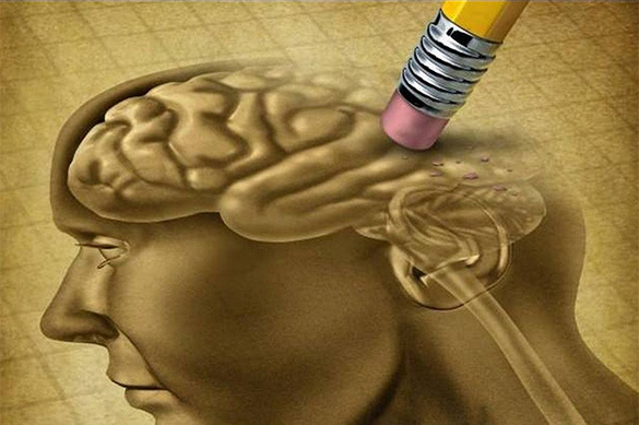 Открыта способность гормона молодости влиять на работу мозга. Открыта способность гормона молодости влиять на работу мозга