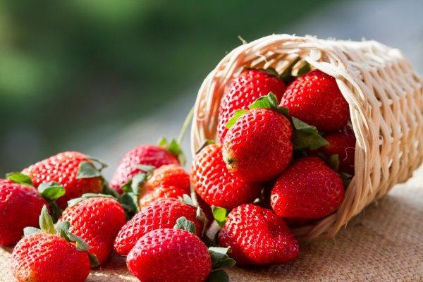 Клубника – самая главная ягода яркого лета. 393365.jpeg