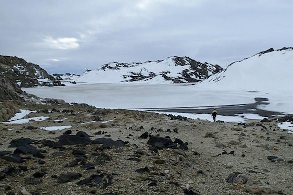 Предшественники вирусов обнаружились в Антарктиде. 374369.jpeg
