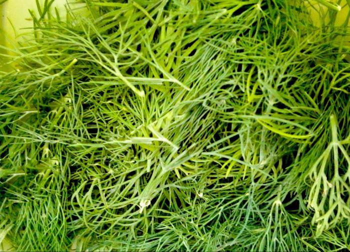 Пьяный пенсионер МВД выстрелил в голову