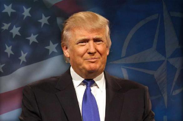 Трамп может уволить министра финансов США. 396372.jpeg