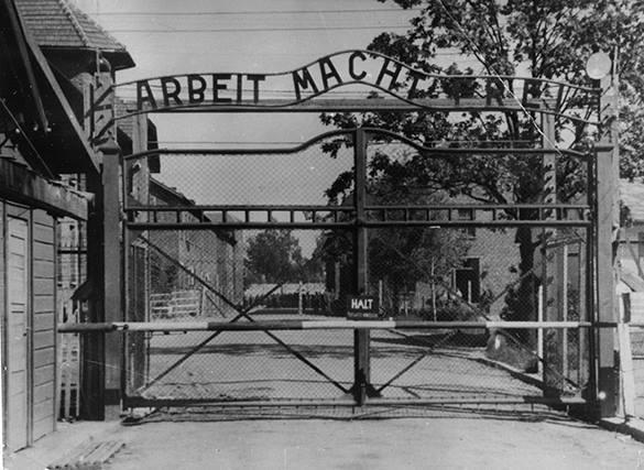 Минобороны России рассекретило освобождение Освенцима Красной армией. 310374.jpeg