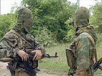 В Чечне и Ингушетии уничтожены почти три десятка террористов
