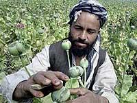 США дополнили список террористов именами 50 афганских