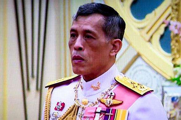 В честь юбилея короля Таиланда в море выпустили тысячу черепах