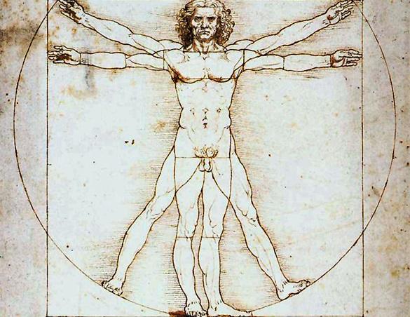 Леонардо да Винчи - художник, анатом и геолог. Жизнь и творчество гения Леонардо да Винчи