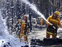 В Австралии введен режим ЧП из-за новых пожаров