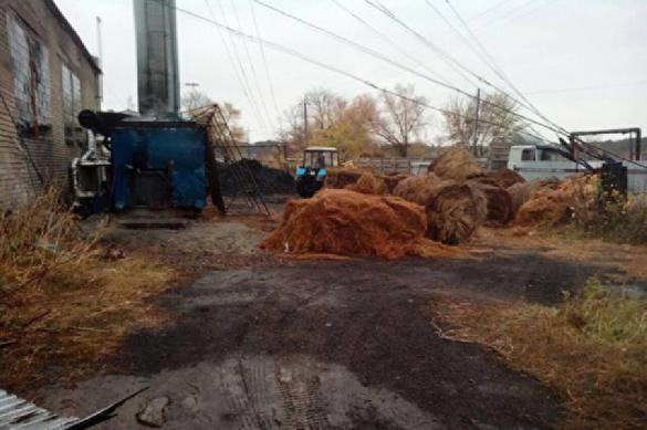 Энергетическая сверхдержава: провинциальные поселки начали отапливать сеном. 393383.jpeg