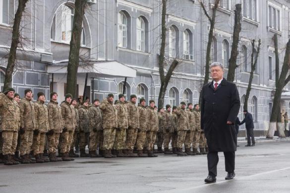 Порошенко разрешит НАТО ввести войска на Украину. 382384.jpeg