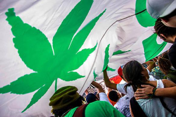 Правительство Канады приняло решение легализовать марихуану. 388384.jpeg