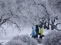 Прогнозы: в холодную Москву сегодня заглянет солнце. 253385.jpeg