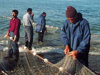 В пограничных водах Амура запретили ловить рыбу