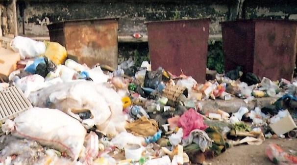 Названы шесть самых мусорных регионов России