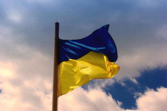 Украина рассматривает создание э-гривны. 392388.jpeg
