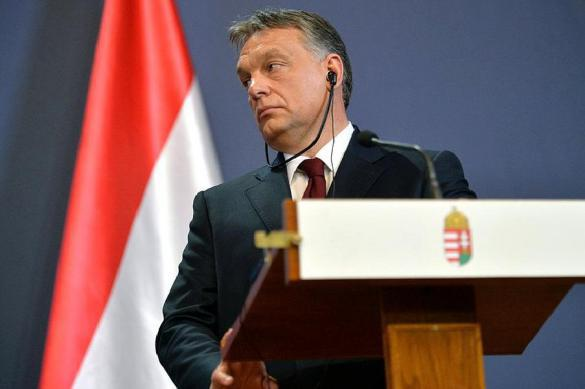 НАТО требует от Венгрии уступок по Украине. 380395.jpeg