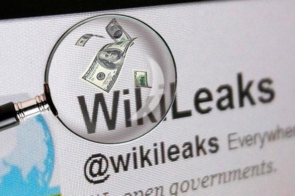 Майкл Макфол обвинил Россию в финансировании WikiLeaks