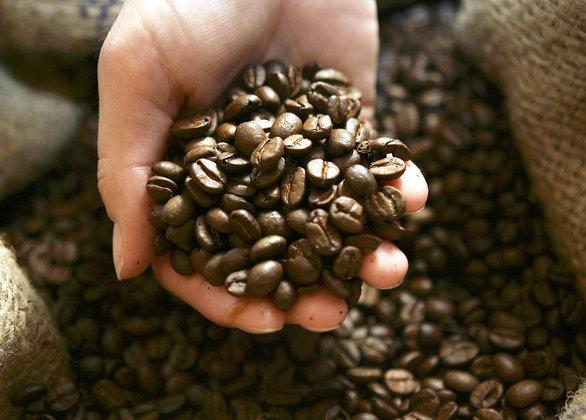 Из-за засухи в мире сократится объем выпуска кофе. Из-за засухи в мире сократится объем выпуска кофе