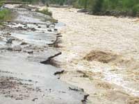 Железную дорогу на Сахалине залило селевыми потоками