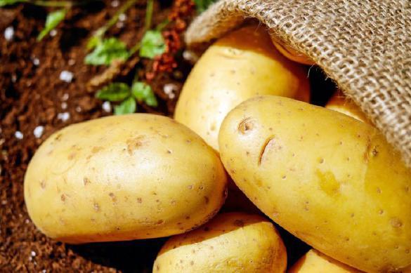 На 3,5 тысячи рублей в месяц можно питаться не только макаронами. 393400.jpeg