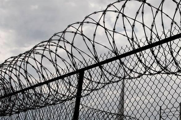 Фотографу-убийце Лошагину дали 10 лет тюрьмы. 322401.jpeg